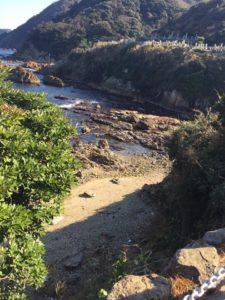 シロアリ被害 - 長野県 -の写真